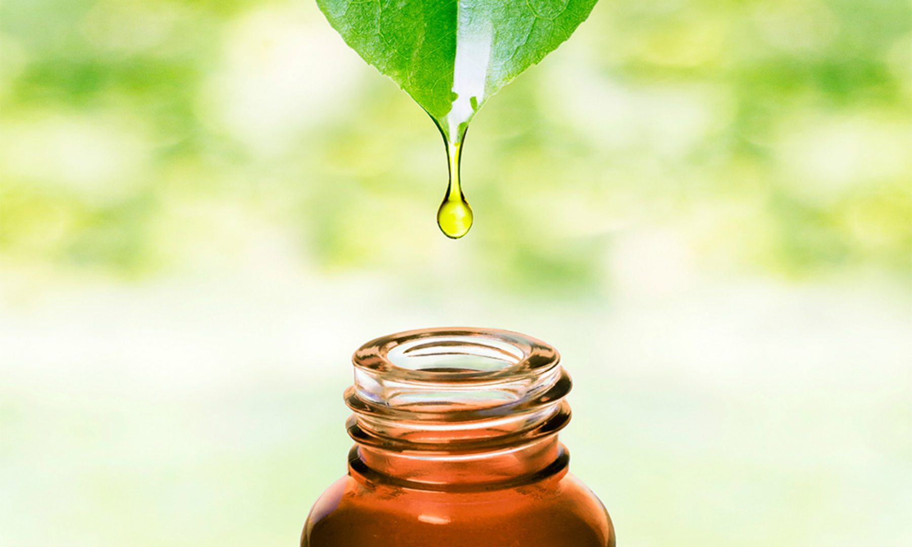 Natural Oily Skincare Products